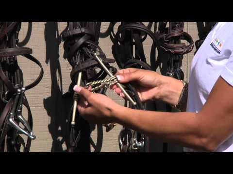 English Tack And Equipment