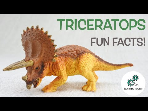 TRICERATOPS FACTS! | Fun & Educational | Dinosaurs For Kids | Best Dinosaur Facts
