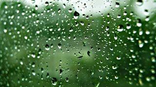 Nếu Radio - Du Ca Nhân Mã 15 - Mênh mang làm gì trước một cơn mưa rồi sẽ tạnh...