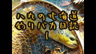 念願の釣り動画初投稿です! 今年初の渓流ドライフライで癒されてきまし...