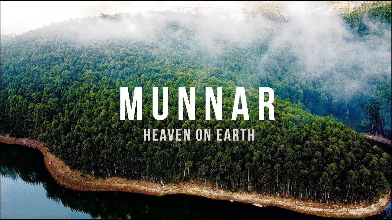 Download Munnar, Kerala | India | Mavic Mini Cinematic Travel Film