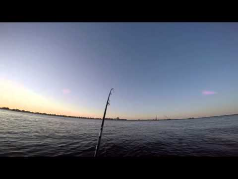 Plum Island Striper Fishing