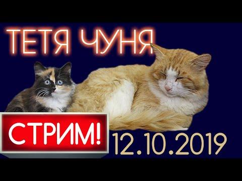 ЧУНЯ LIVE ❆ СТРИМ 12.10.2019
