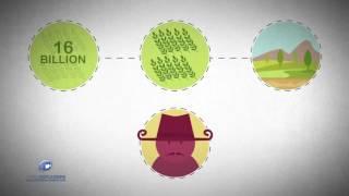 2D-Cartoon-Animation -Colorado-Wasser-Versorgung Von Video-Erklärer
