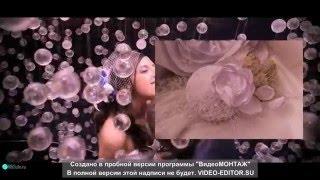 Свадебные вуалетки (SONATA )