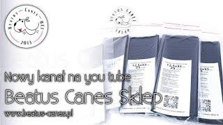 Nowy kanał na you tube Beatus Canes Sklep