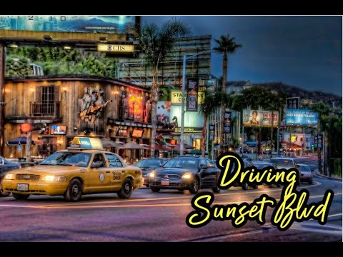 Driving Sunset Blvd (End to End)