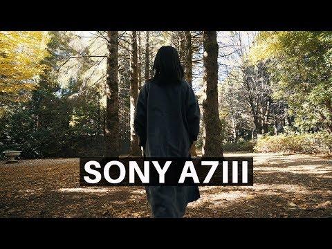 Sony A7iii | Cine 4 Vlog Test - Mount Wilson Sydney