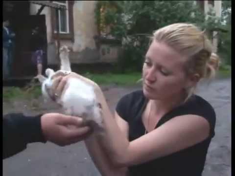 Узбек выебал женшину ка улице фото 472-472