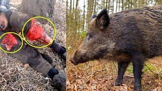 فيديو خطير لخنزير بري يهاجم رجلا- ادخله المستعجلات