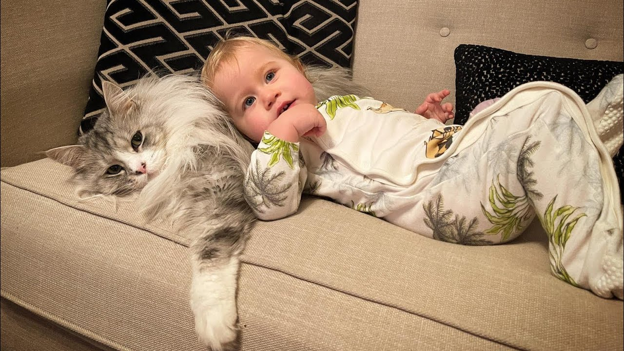 Baby And Cat Are Best Friends They Love To Cuddle! (Cutest Bond Ever!!)