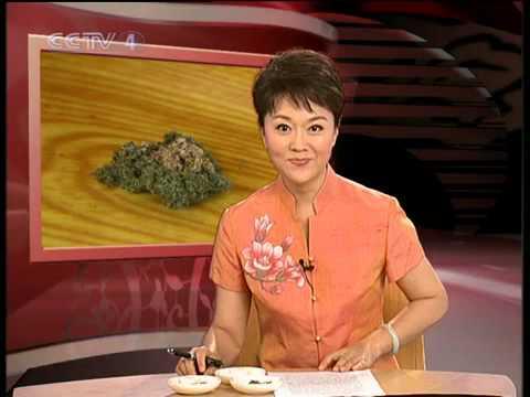 中华医药2010年 第28期 耳聪目明'艾'中求
