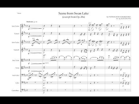 Scene from Swan Lake (Tchaikovsky) - Arr  for String