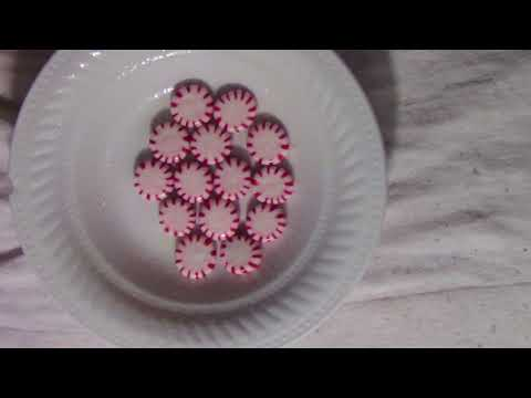 DIY Christmas Candy Dessert Plate