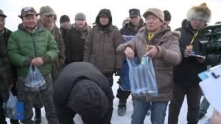Hamtdaa Zagaschilya 2014 01 25 TEMTSEEN Хамтдаа Загасчилья өвлийн тэмцээн 2 р хэсэг