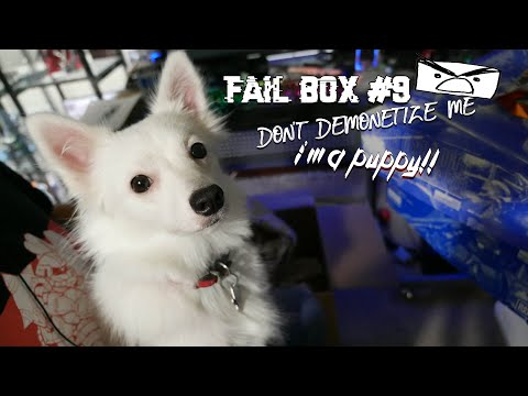 Fail Box #10: Don't Demonetize me I'm a Puppy