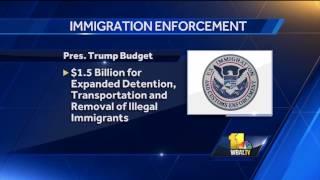 Video: People overstaying visas, immigration arrests up, report finds