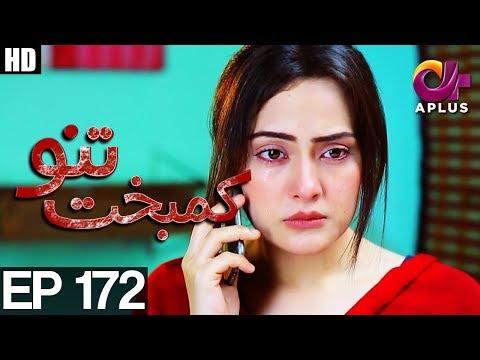 Kambakht Tanno - Episode 172 - A Plus ᴴᴰ Drama