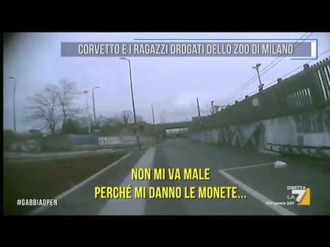 Corvetto e i ragazzi drogati dello zoo di Milano