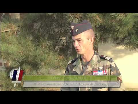 Le 3e  régiment d'infanterie de marine  décoré par le ministre de la Défense - septembre 2012