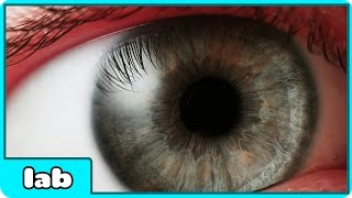 11 Amazing & Mind Blowing Facts About The Human Eye By HooplaKidzLab