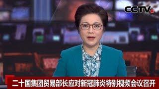 [中国新闻] 二十国集团贸易部长应对新冠肺炎特别视频会议召开 | 新冠肺炎疫情报道