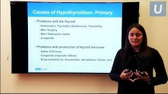 The Underactive and Overactive Thyroid - Dr. Smooke & Dr. Leung | #UCLAMDChat Webinar
