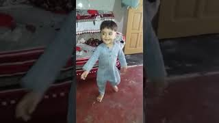 Pmln songs