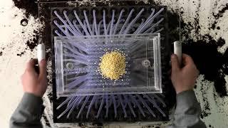 Универсальная ручная сеялка для кассет - процесс высадки семян