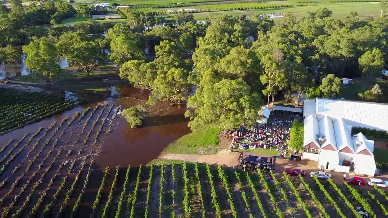 swan valley flood upper reach winery with snake mavic. Black Bedroom Furniture Sets. Home Design Ideas