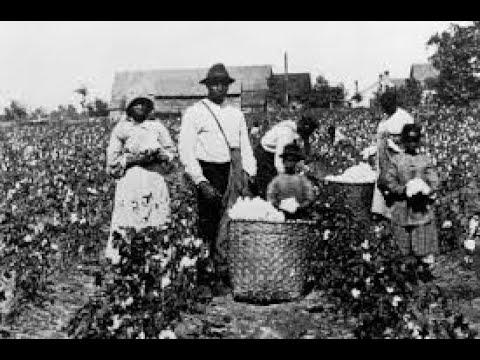 Negro Slavery today _LE(3)