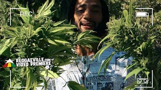 Ras Indio - Legalize It [Official Video 2018]