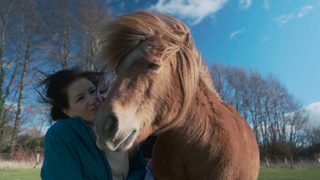 Someone to lean on | A story about a mother with MS and the pony that helped her walk