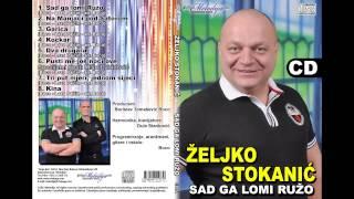 Zeljko Stokanic i Miso Davidovic - Pusti me jos noci ove - (Audio 2013)