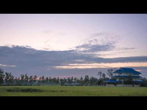 Ricefield Sunrise- Chiang Mai, Thailand