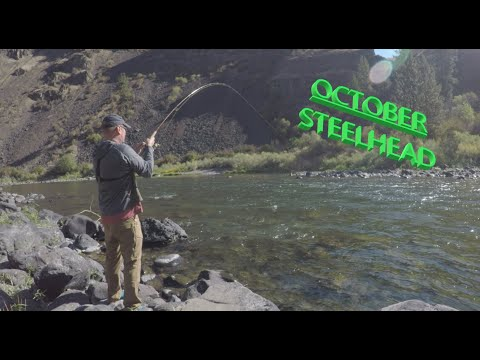 October Steelhead, Fishing For Steelhead, And Fall Coho Salmon On Oregons Grande Ronde River.