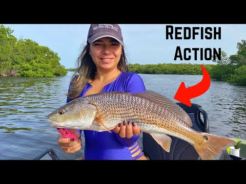 Inshore Kayak Fishing In Southwest Florida | New Website & Kayak Fishing Charters