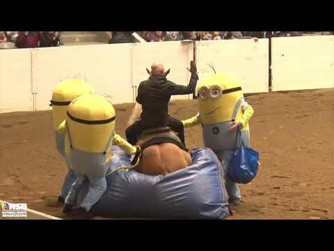 2019 Quarter Horse Congress Freestyle Reining Dan James on Don Magnum Multicam