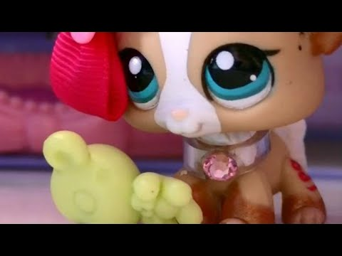 Lps Bully School Part 1 Meeting The Trouble Doovi