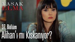 Zeynep, Alihan'ı mı kıskanıyor? - Yasak Elma 37. Bölüm