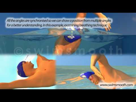 Animated Freestyle Swimming Visualisation - Mr Smooth