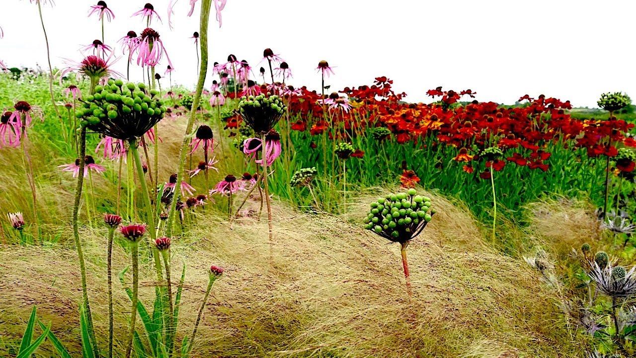How landscape designer Piet Oudolf captures nature's 'emotion ...
