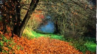 Земна доріженька | Ukrainian song | Тріо Левит