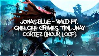 Jonas Blue Wild