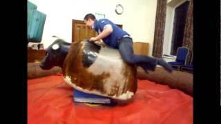 Bull humping ??