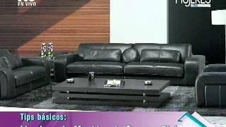 Limpieza de Muebles de Cuero o Piel (METVC)
