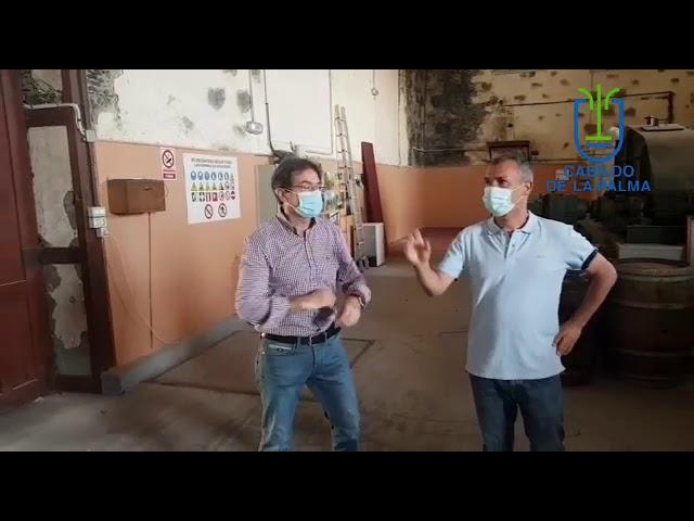 El Cabildo trabajará con los cosecheros y Ron Aldea para dar salida a la producción de caña de azúcar de este año.