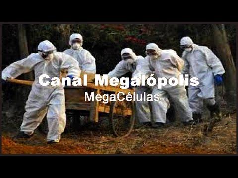 MICROORGANISMOS (Epidemias)