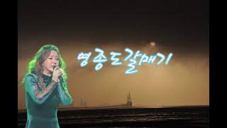 금잔디#영종도갈매기#공연직캠영상