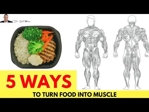 💪-5-ways-to-turn-food-into-muscle-&-not-fat---by-dr-sam-robbins